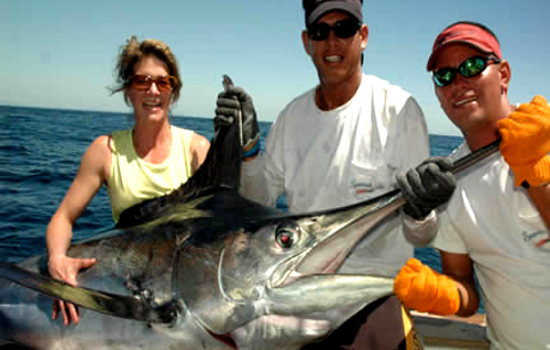 sailfish caught in costa rica