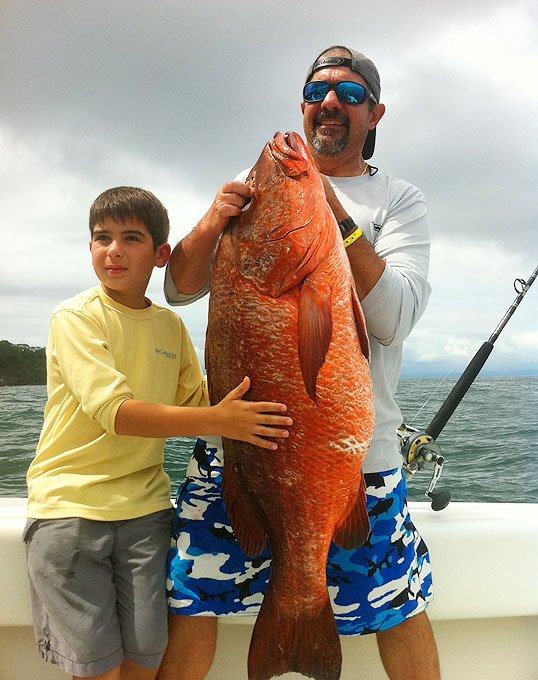 Snapper Catch