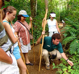 tours in Manuel Antonio National Park