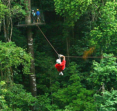 Best Tours Jaco Canopy
