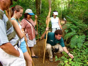 Best Guided Tours in Costa Rica
