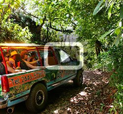<h1> 	Costa Rica Rainforest Tours <br>  	<strong>Jaco Beach & Los Suenos Resort</strong></h1>