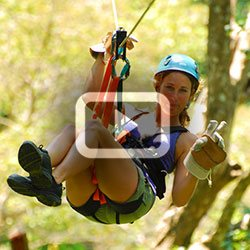 <h1> 	<strong>Jaco Canopy Tour</strong></h1>